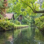 Spreewald- Islands forest and lacework of channels